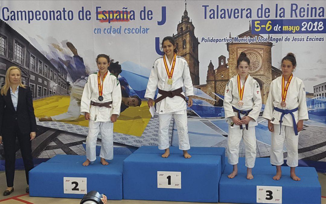 El Club Deportivo Elemental Lorkan se trae dos medallas del Campeonato de España en edad escolar de Judo